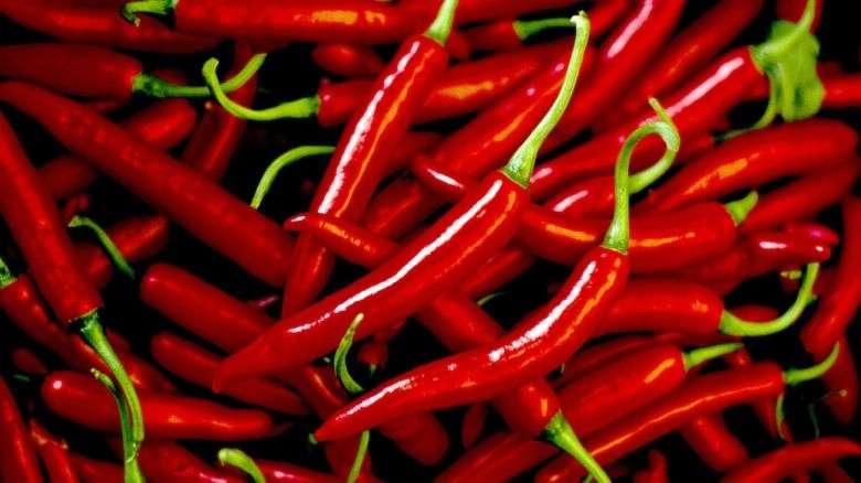 Rubrica Benessere, 10 alimenti che accelerano il metabolismo
